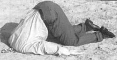 Name:  head-in-sand.jpg Views: 175 Size:  11.2 KB