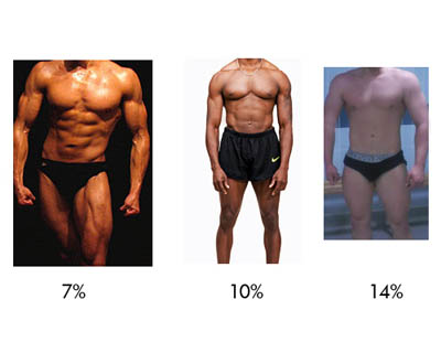 Name:  male-body-fat-percentages-pictures.jpg Views: 160 Size:  16.2 KB