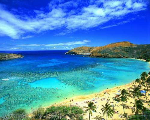 Name:  Hawaii_Generic.jpg