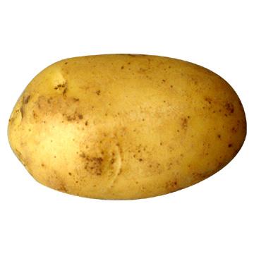 Click image for larger version.  Name:potato.jpg Views:24 Size:29.7 KB ID:147007