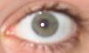 Name:  Eye.PNG Views: 169 Size:  10.1 KB