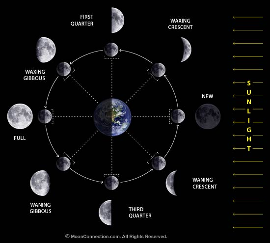 Name:  moon_phases_diagram.jpg Views: 16 Size:  26.4 KB