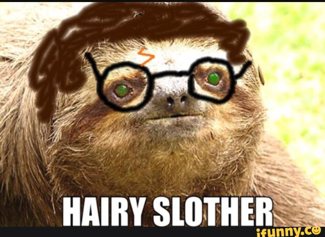 Name:  Hairy Slother.jpg