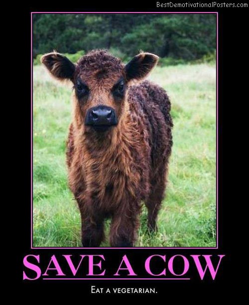 Name:  save-a-cow-eat-a-vegetarian-best-demotivational-posters.jpg Views: 22 Size:  51.2 KB