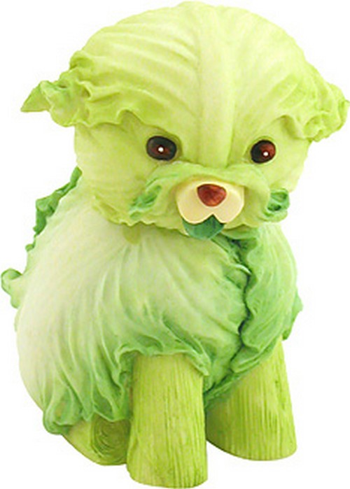 Name:  Creepy cabbage puppy WTF1.jpg