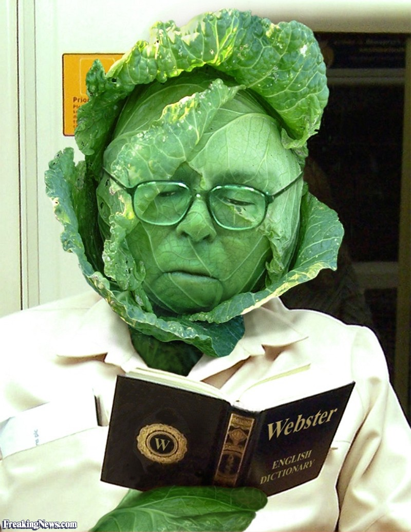 Name:  Man-with-a-Cabbage-Head-Reading-a-Book--25651.jpg