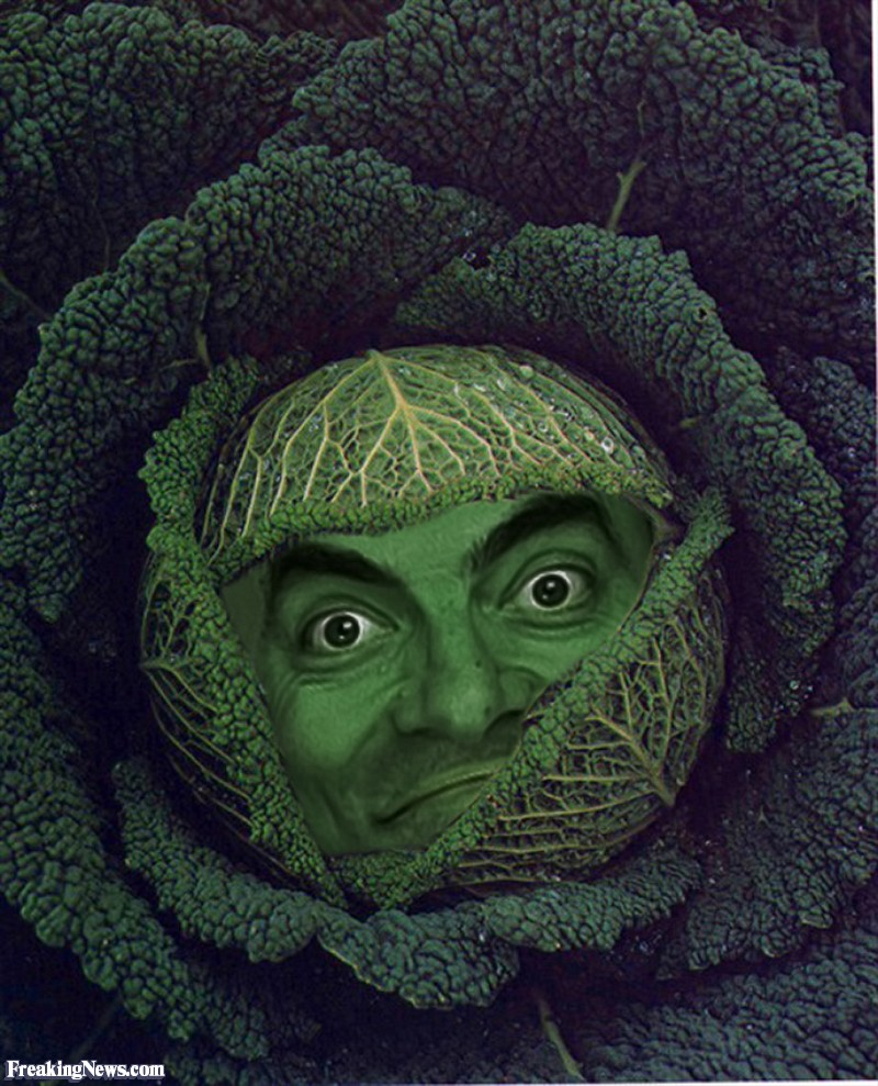 Name:  Mr-Bean-Cabbage--54222.jpg