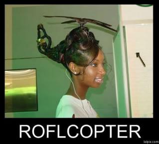 Name:  Roflcopter.jpg Views: 78 Size:  16.9 KB