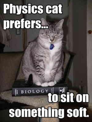 Name:  physics_cat.jpg Views: 19 Size:  12.4 KB