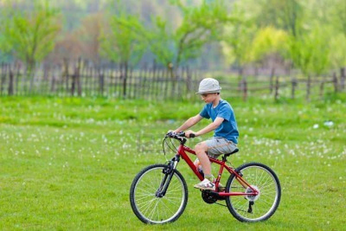 Name:  9538850-boy-with-hat-riding-a-bicycle-on-a-grass-field.jpg