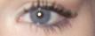 Name:  eye.png Views: 59 Size:  7.1 KB