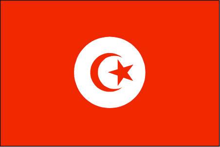 Name:  tunisia.jpg Views: 43 Size:  10.7 KB