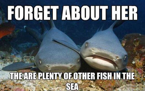 Name:  plenty-more-fish-sea-sharks-1304224601h.jpg Views: 53 Size:  54.3 KB