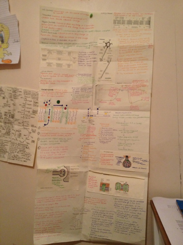 biology f215 june 2013