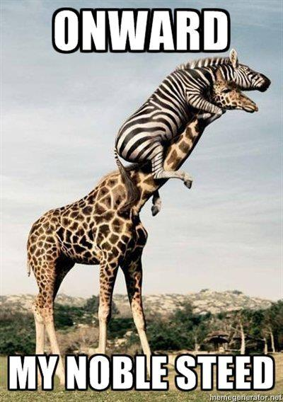 Name:  giraffe and zebra.jpg Views: 123 Size:  45.5 KB