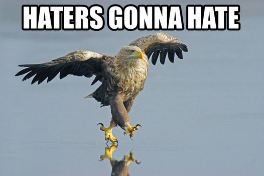 Name:  haters_gonna_hate_eagle.jpg