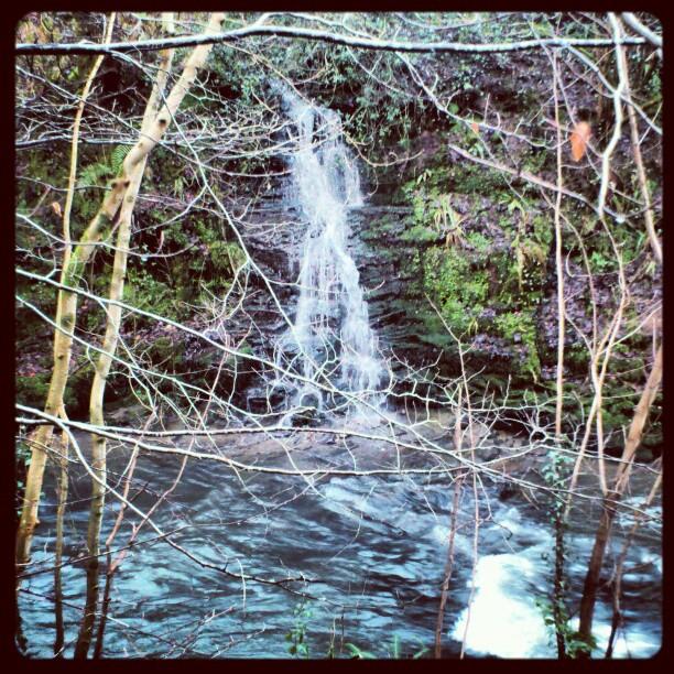 Name:  waterfall.jpg Views: 107 Size:  193.5 KB