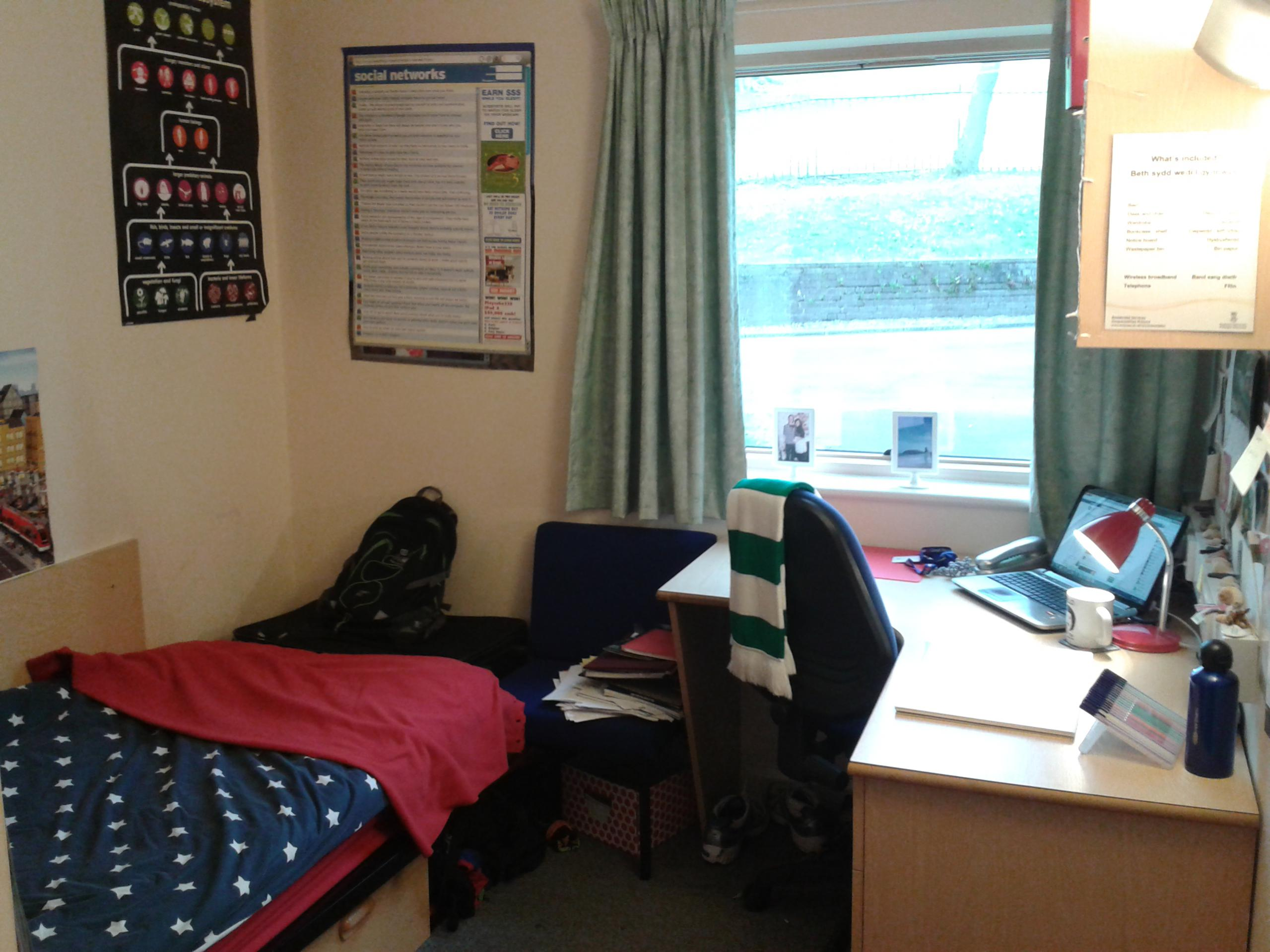 Hendrefoelan Student Village Room