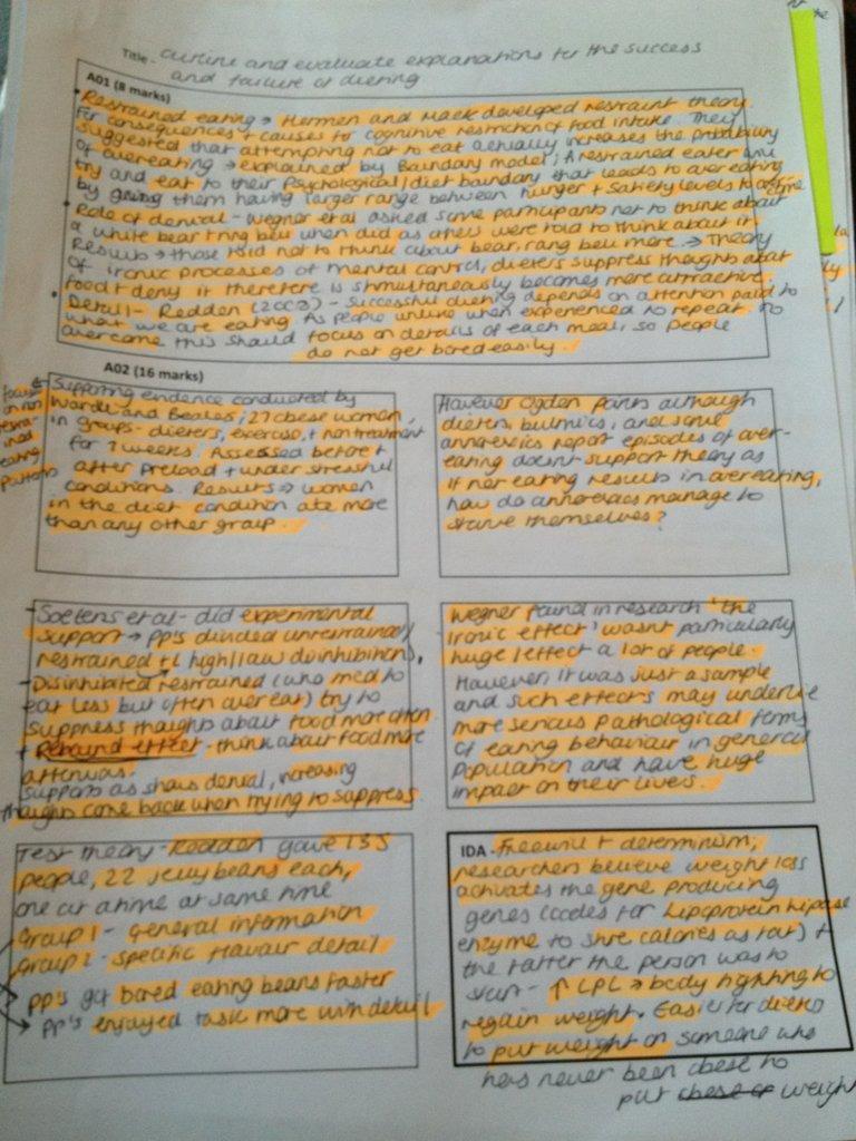 Spanish past holiday essay