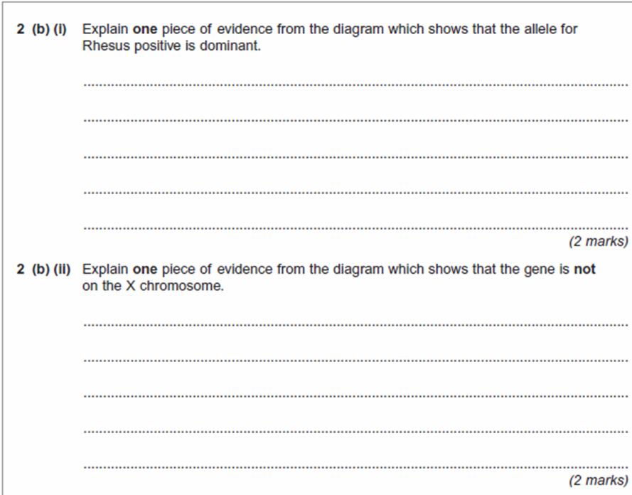 A level biology essay