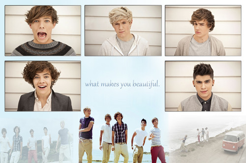Name:  One-Direction-3-one-direction-30399687-500-333.jpg Views: 202 Size:  52.7 KB