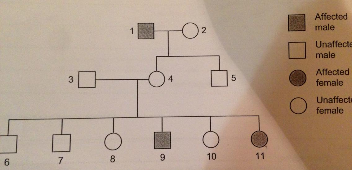 Can any one help me with my biology?