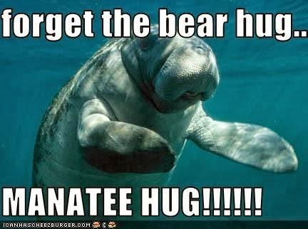 Name:  manatee+hug.jpg Views: 84 Size:  31.4 KB
