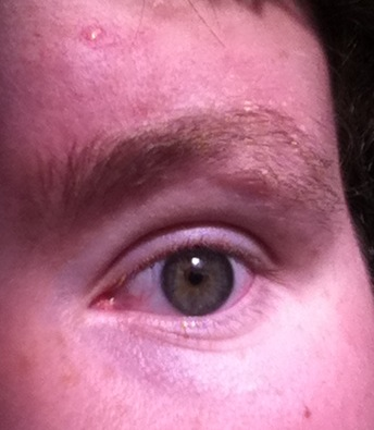 Name:  eyeeye.JPG Views: 38 Size:  34.4 KB