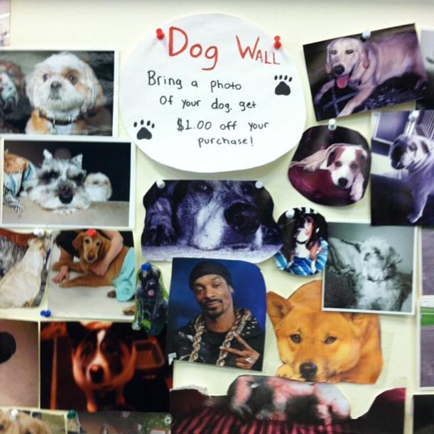 Name:  dogwall.jpg Views: 274 Size:  58.4 KB