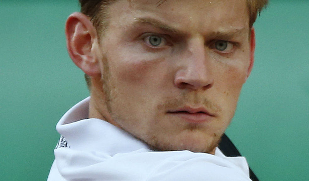 Name:  David_Goffin-tenis-Roland_Garros_ALDIMA20130528_0006_3.jpg
