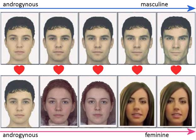 if women are attracted to high test levels - The Student Room