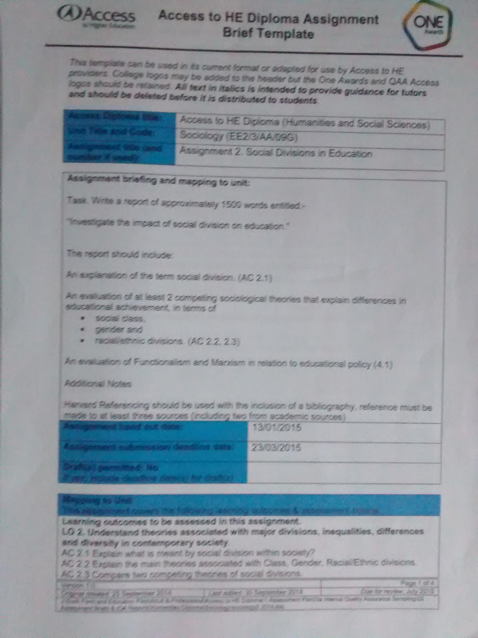 Essay vs written report