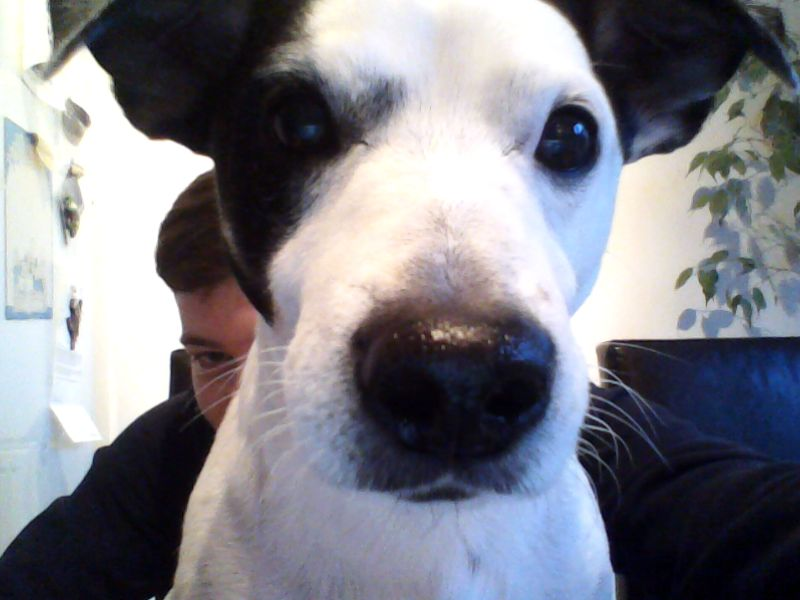 Name:  webcam-toy-photo4.jpg Views: 62 Size:  51.6 KB