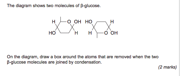 Beta glucose as aqa biology the student room name screen shot 2015 05 29 at 140927g views fandeluxe Image collections