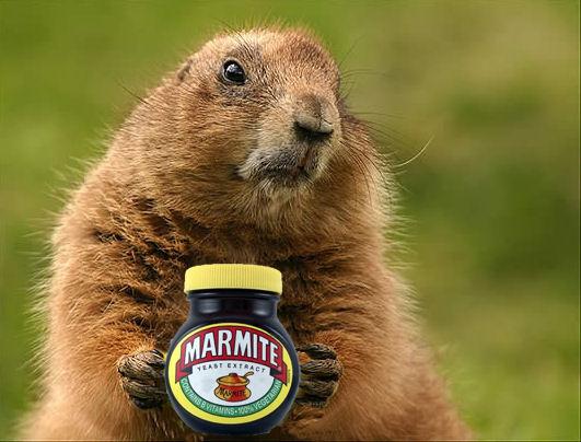 Name:  marmotmite.jpg Views: 270 Size:  56.9 KB
