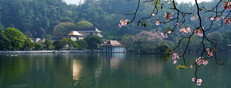Name:  temple-tooth-relic.jpg Views: 289 Size:  75.4 KB
