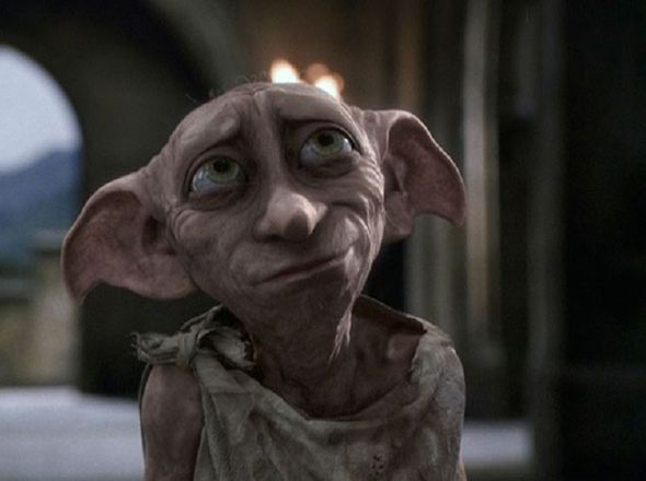 Name:  dobby-harry-potter-dog-222063.jpg