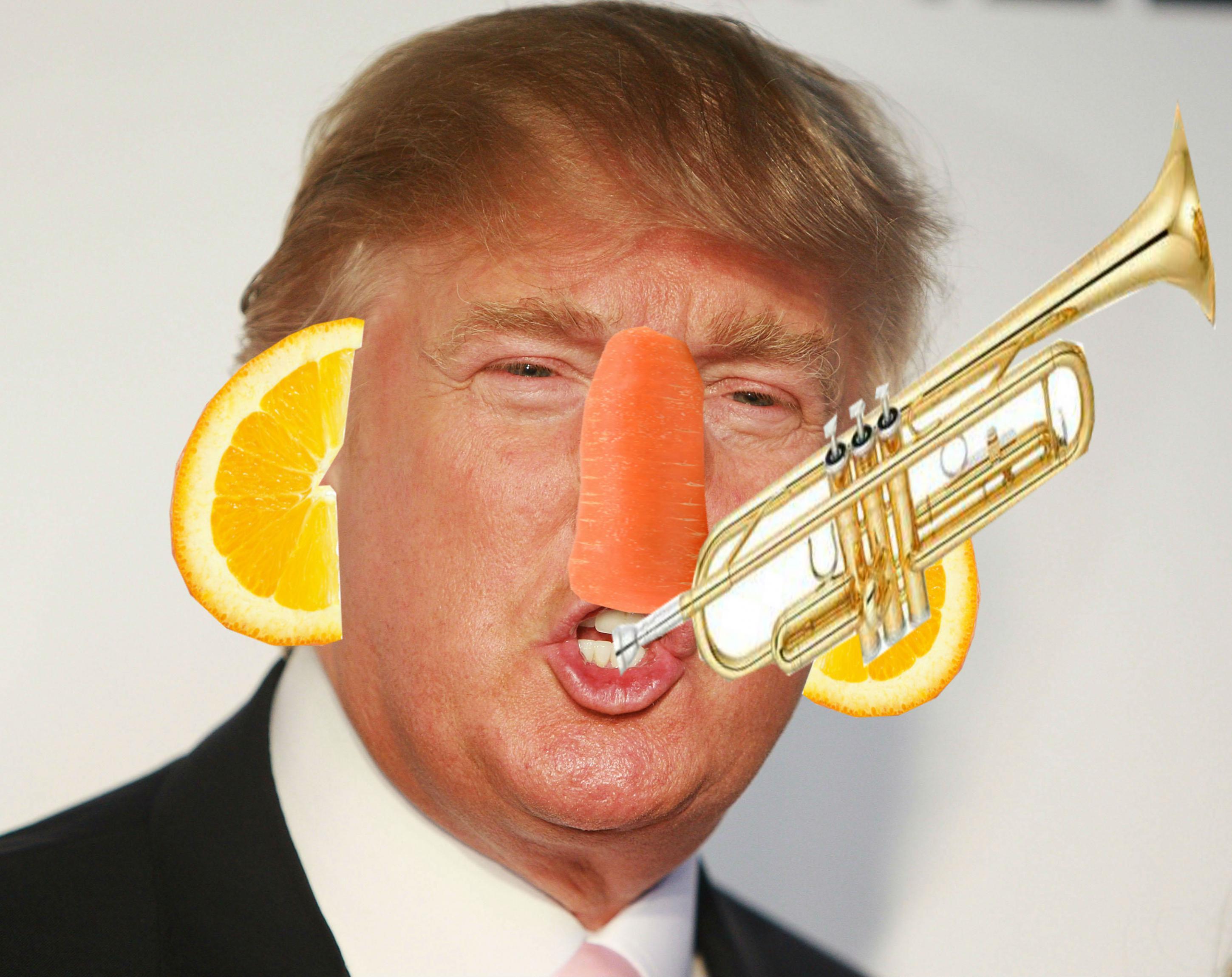 Name:  Donald C Trumpet.jpg Views: 87 Size:  496.9 KB