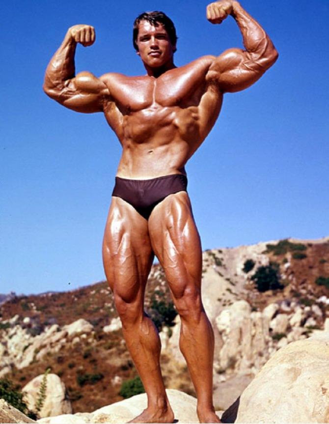 Name:  Arnold-Schwarzenegger-3t.jpg Views: 242 Size:  117.2 KB