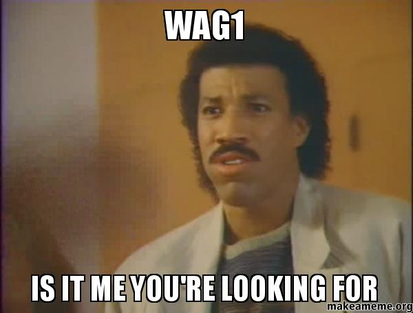 Name:  WAG1-IS-IT.jpg