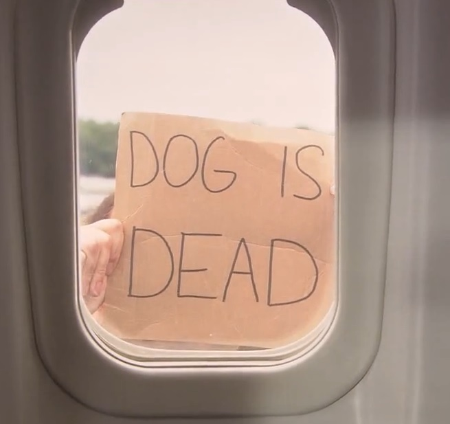 Name:  Dog_Is_Dead.jpg Views: 214 Size:  52.1 KB