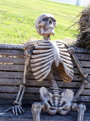 Name:  Waiting-Skeleton.jpg Views: 161 Size:  30.1 KB