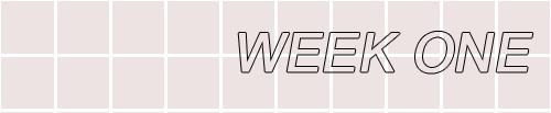 Name:  week one.png Views: 47 Size:  10.9 KB