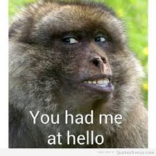 Name:  monkeyme.png Views: 66 Size:  78.9 KB