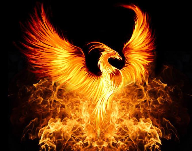 Name:  Phoenix.jpg Views: 27 Size:  151.6 KB