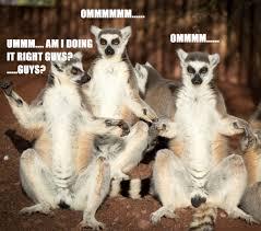 Name:  lemur.jpg Views: 8 Size:  9.7 KB