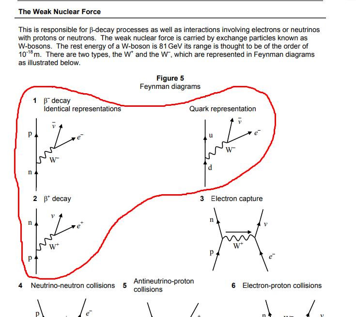 Feynman Diagrams The Student Room