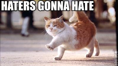 Name:  hatersgonnacat.jpg