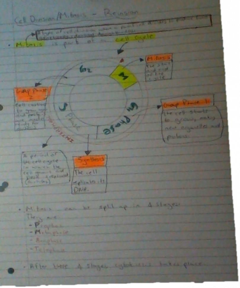 Name:  Biology notes.jpg Views: 216 Size:  61.0 KB