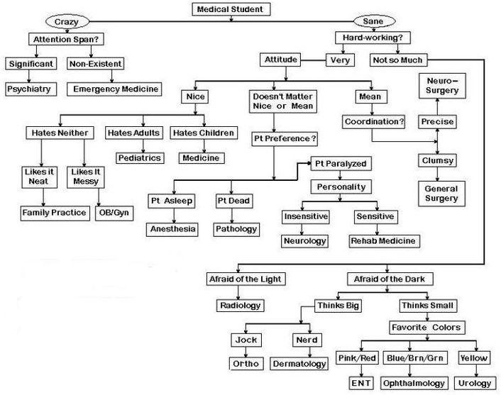 Name:  Medical-Student-Algorhythm.jpg Views: 58 Size:  74.4 KB